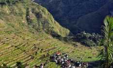 Ifugao Rice Terraces Trek & Manila